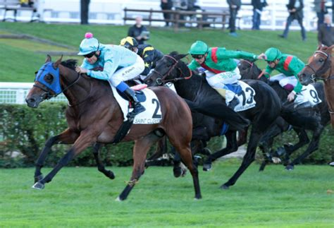 Pin on 2014 Group & Graded Stakes Winners
